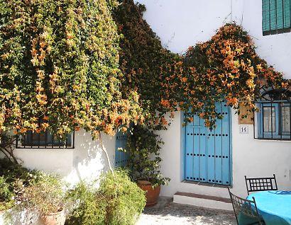 スペイン美しい村フリヒリアナ-4