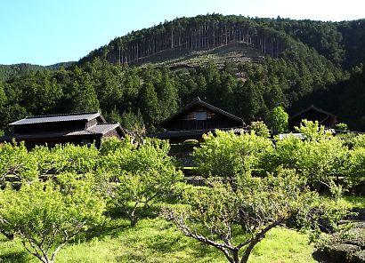 新緑の山間部風景-1