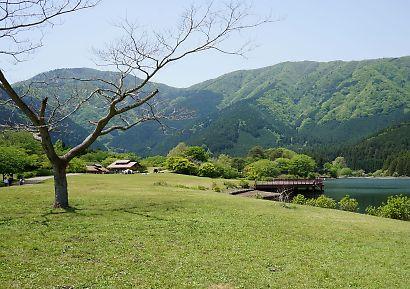 富士山と新緑田貫湖の画像-4