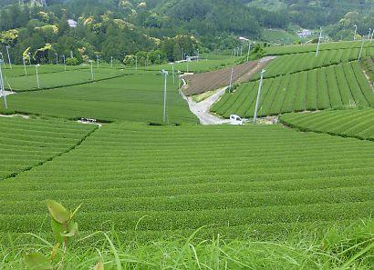 粟ヶ岳ハイキング画像-8