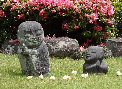 宝泰寺のジャカランダ画像-4