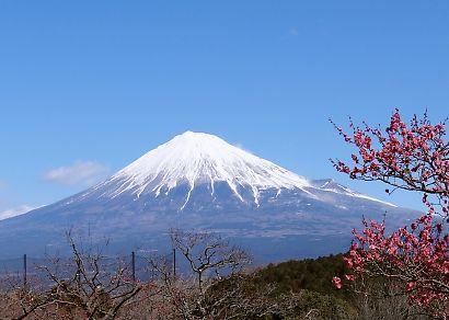 富士山を麓-3
