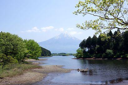 富士山を麓-6