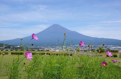 富士山を麓-7
