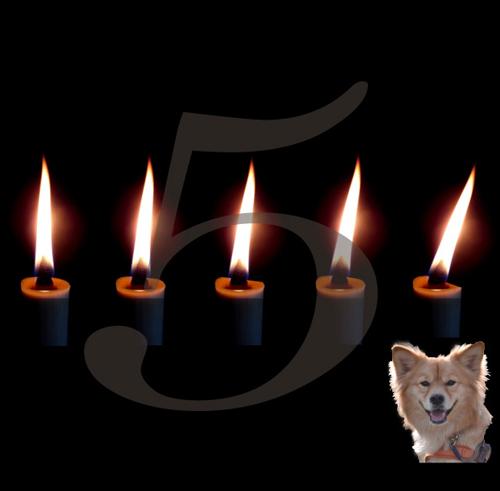 2-140225-anniversary.jpg