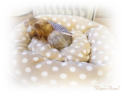 冬ベッド③