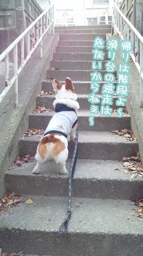 帰りは階段