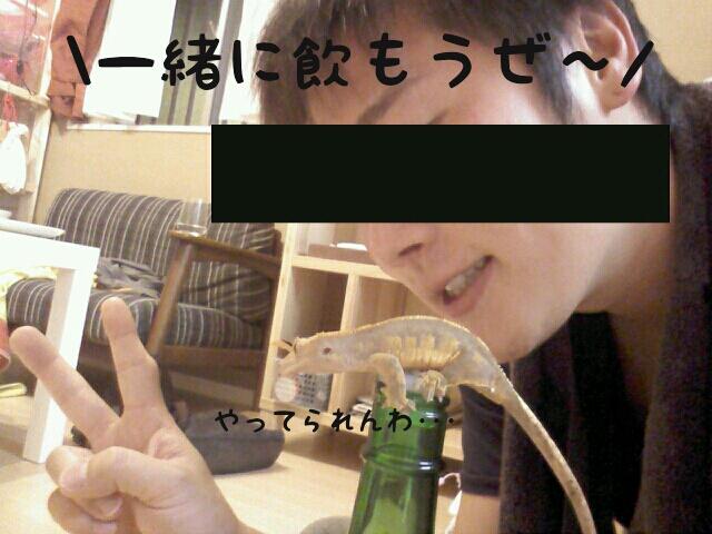 moblog_04155740.jpg