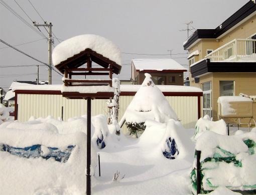 s-536-1大雪