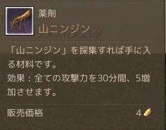 20130806山ニンジン