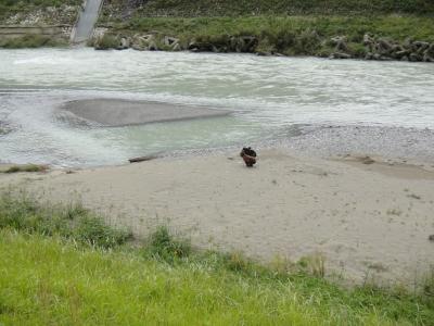 10月最後の川