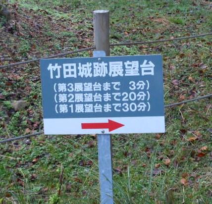 彼岸花 竹田城 コスモス 067
