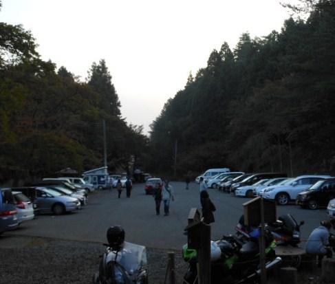 彼岸花 竹田城 コスモス 068
