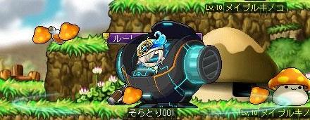 Maple130804_085017.jpg