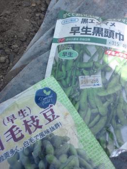 20130427枝豆