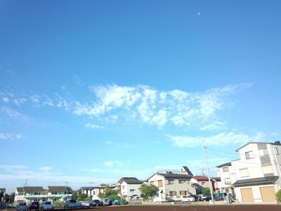 FC2-skyblue.jpg