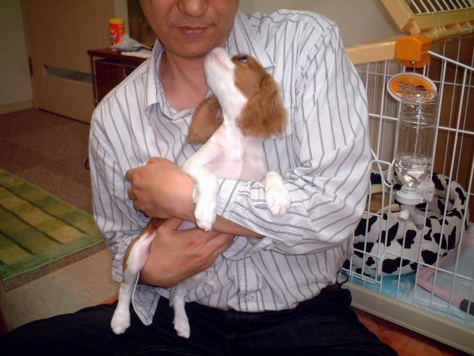 blog_2006-11-01 22-33DSCF0030