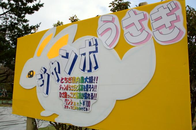 blog-DSC01362.jpg