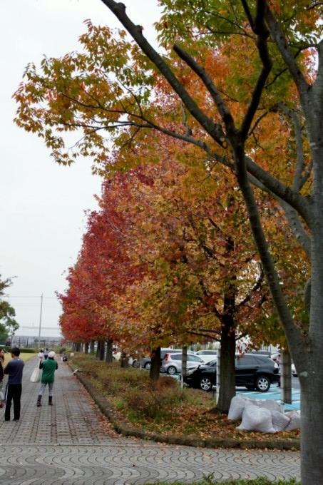 blog-DSC03536.jpg