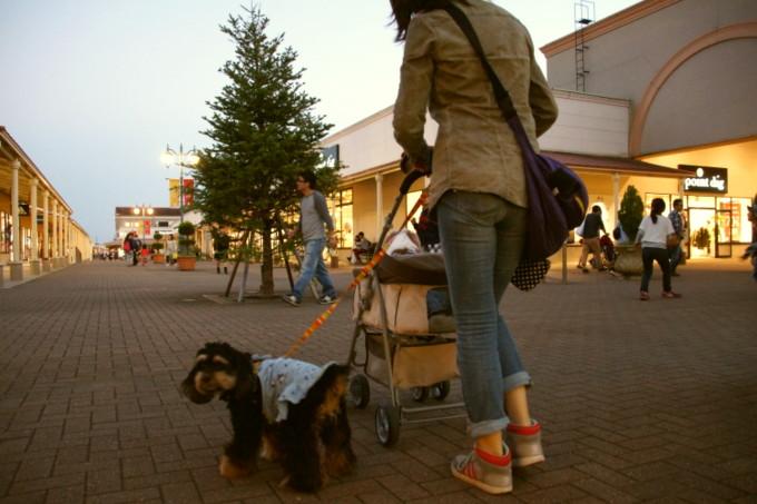 blog_DSC01115.jpg