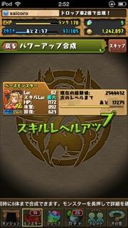 IMG0803220603.jpg