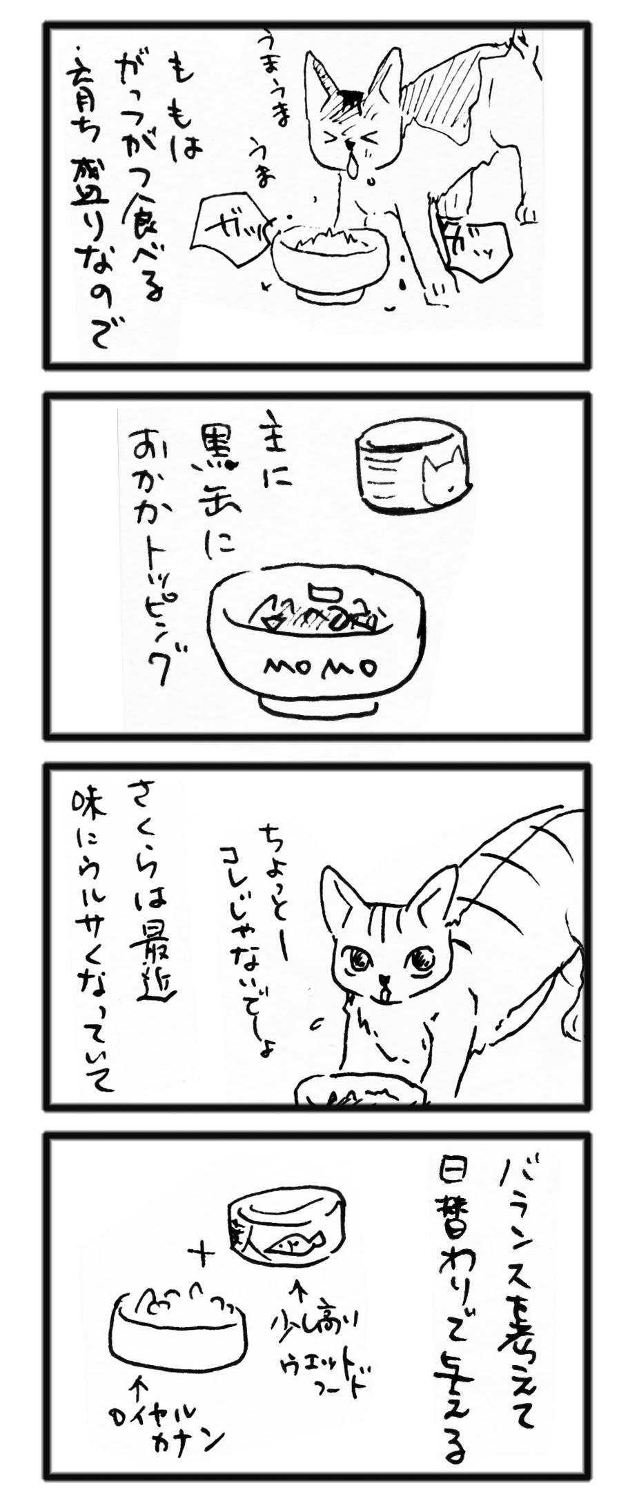 comic_13110401.jpg