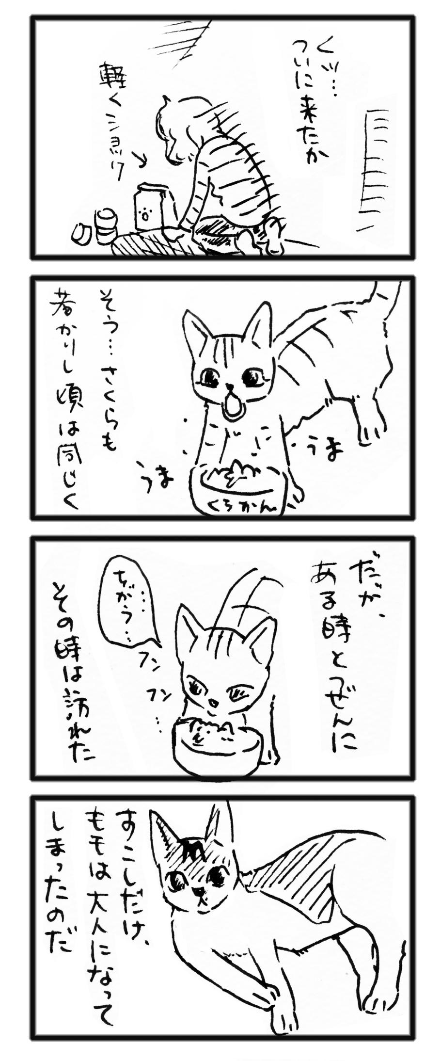comic_13110403.jpg