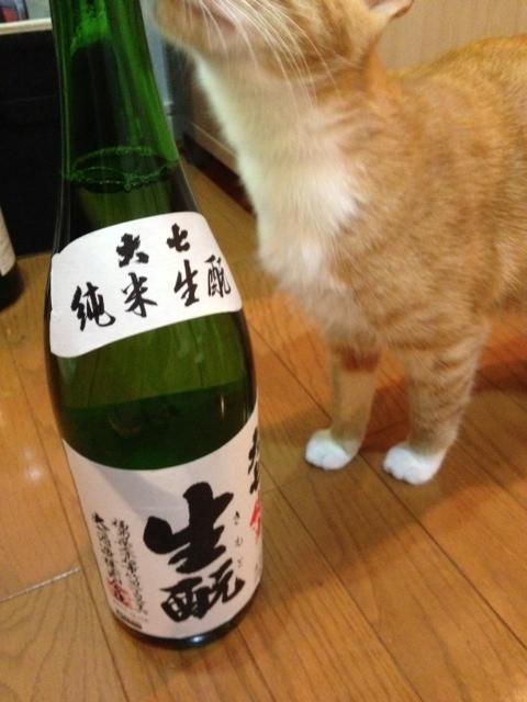 sake131108.jpg