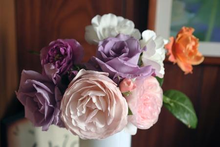 roses2013523-2.jpg
