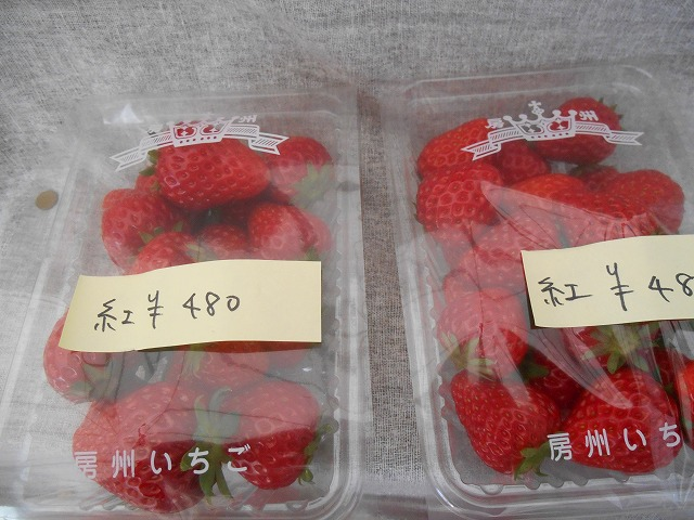 480円 イチゴ