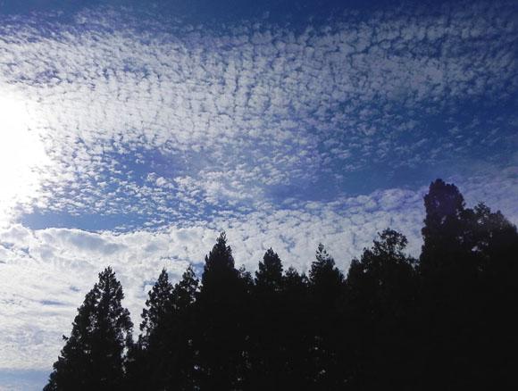 17:06雲