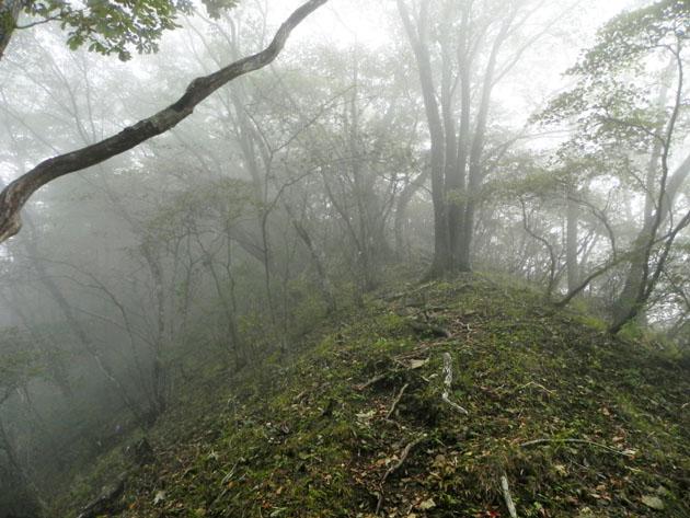 16-9:24山道