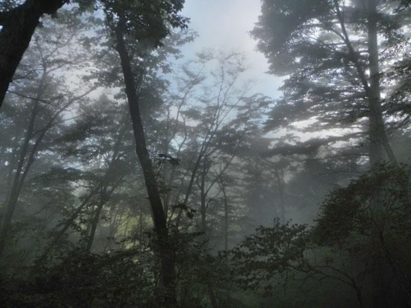 17-9:25霧