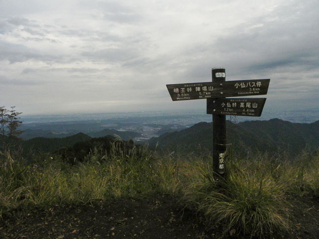 11-8:29景信山