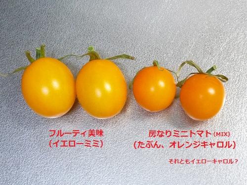 P1120406.jpg