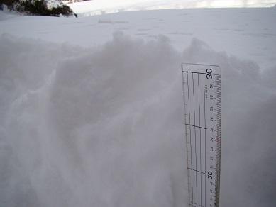 予報通り、約30cmの積雪です。