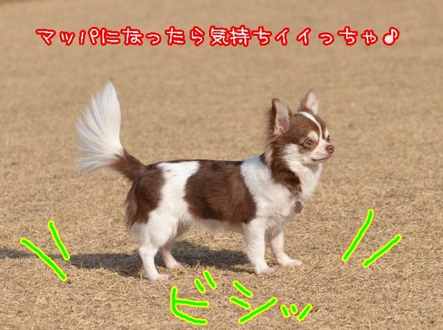 DSC_2090.jpg