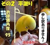 201305232019281d4.jpeg