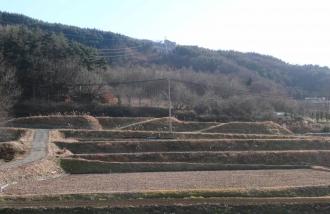坂城町の棚田