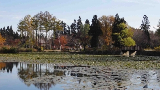 妙高いもり池周辺141031-2