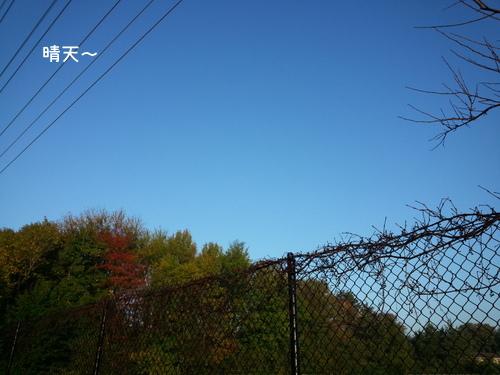 20131015_080015.jpg