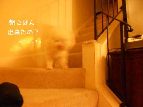 DSCN2289.jpg