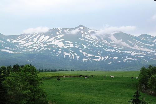 s-山と大地と牛