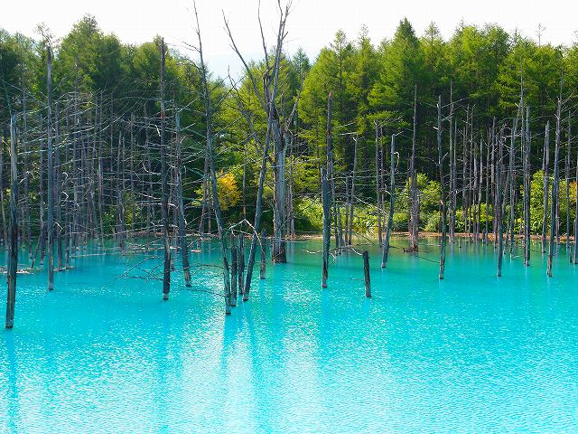 s-7月の青い池