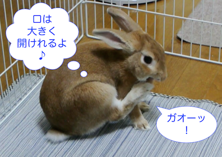 20130825102649.png