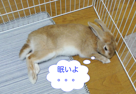 20130831103651.png