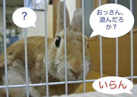 DSC_5556.jpg