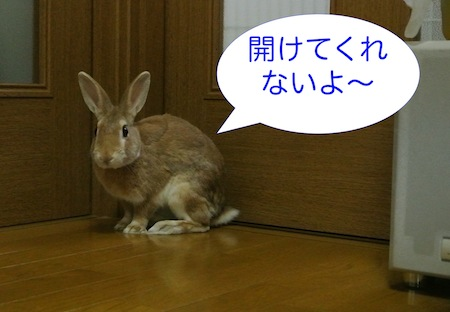 DSC_5649.jpg
