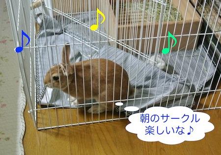 DSC_6201.jpg