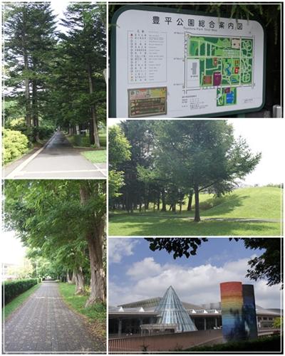 夏の豊平公園